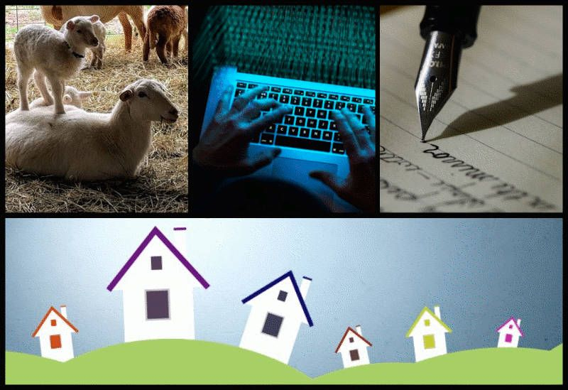 farm ~ hack ~ write ~ real estate